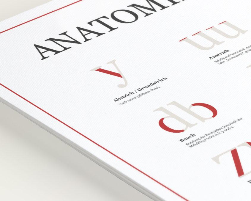 Anatomie-der-Buchstaben-Plakat-1