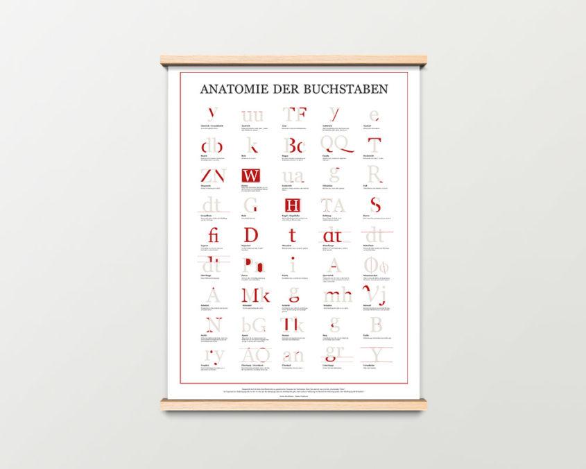 Anatomie der Buchstaben Plakat